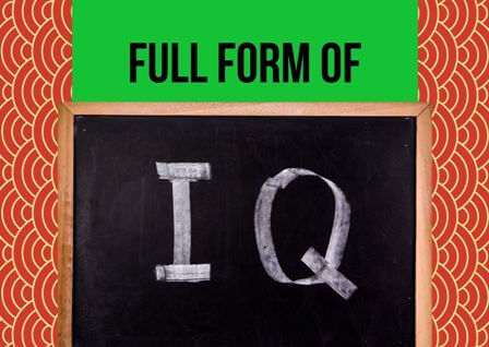 IQ Full form stands for